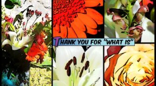"""Thirty days to thank """"What Is"""""""